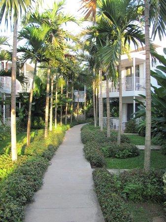 Negril Palms Hotel : дорога из номера к морю