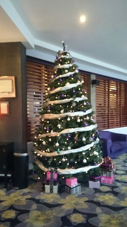 Christmas tree in lobby of Gleneagle Hotel, Killarney, 20-12-13