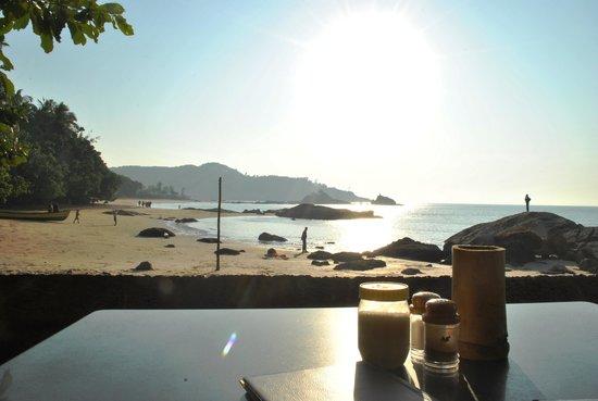 Namaste Cafe: frm the restaurant