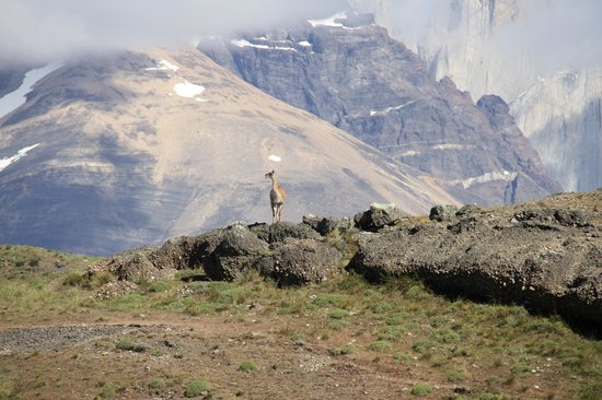 explora Patagonia - All Inclusive : hiking