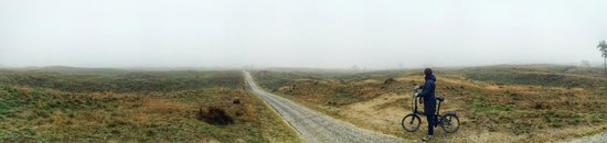 De Hoge Veluwe National Park: Hoge Veluwe panorama