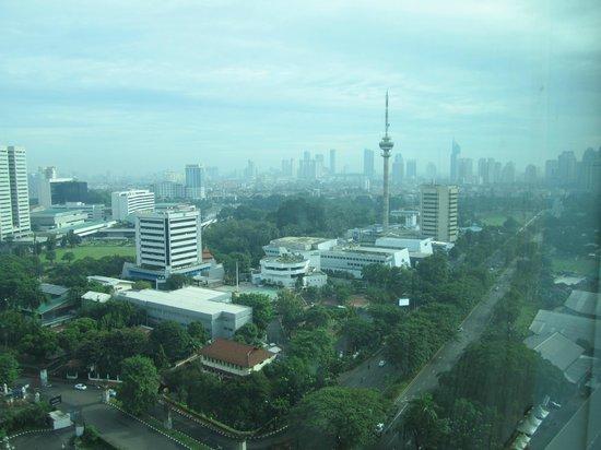 Hotel Mulia Senayan, Jakarta : view