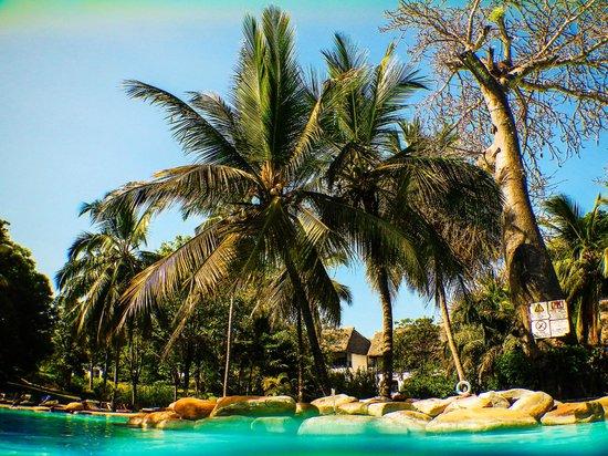 Papillon Lagoon Reef : le paradis