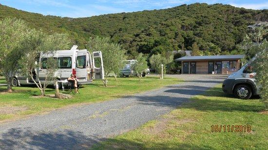 Bay of Islands Campervan Park: Parking and toilet block