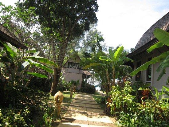 Barali Beach Resort : from room garden