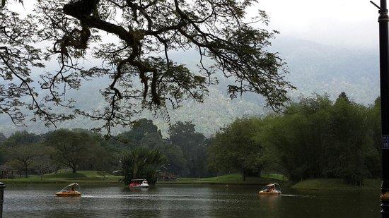 Taiping Lake Gardens: Peaceful