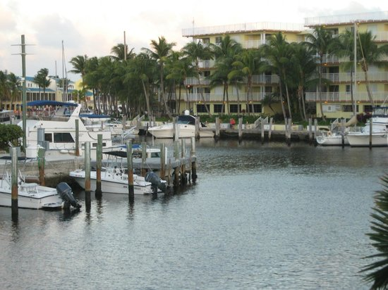 Holiday Inn Key Largo : View from our room...