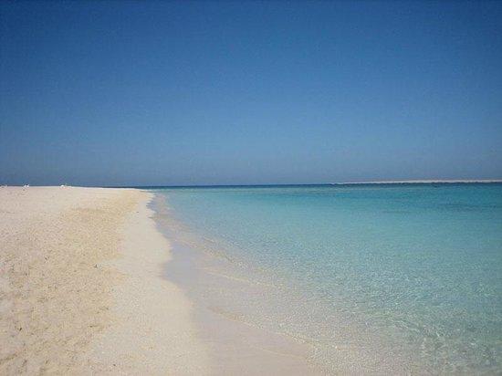 Îles Giftoun : берег острова