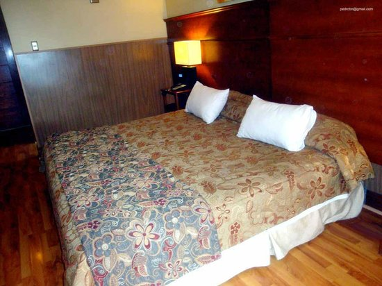 Hotel Panamericano : Apto, com ampla cama