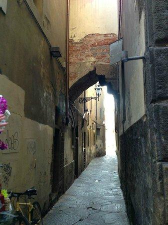 Artviva: The Original & Best Tours Italy : Florence side streets