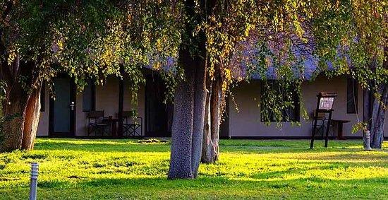 Mokuti Etosha Lodge: Room View