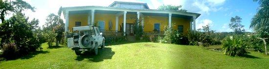 Germaican-Hostel : getlstd_property_photo