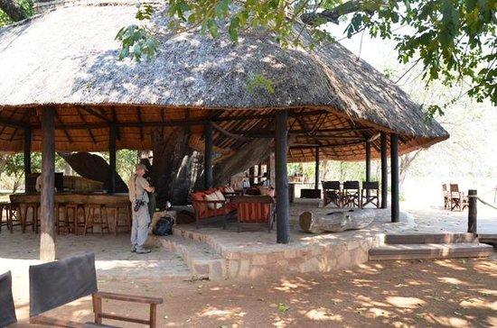 Nkwali Camp: Main Lounge