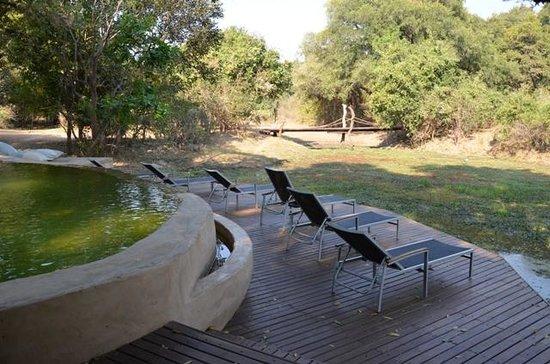Nkwali Camp: Pool Area