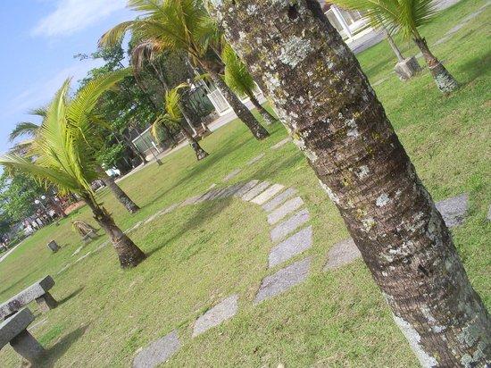 Pousada Cavalo Marinho: Jardim entre a praia e a pousada