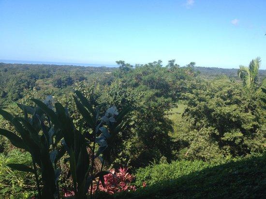 Costa Rica Yoga Spa : Great view