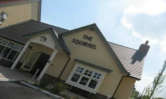 The Squirrel: Great food and customer service .