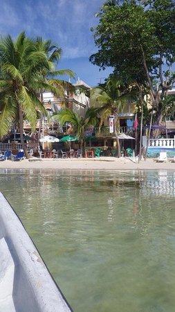 Caribbean Divers : Tauchbasis