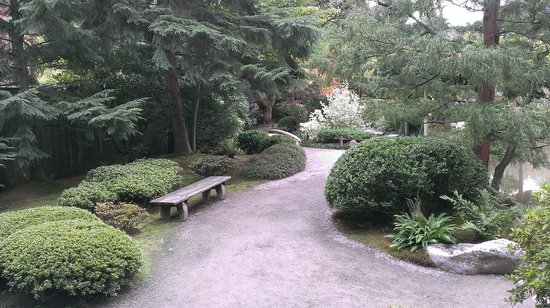 Washington Park Arboretum : Garden - Seattle