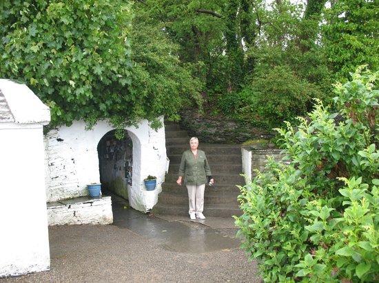 St. Brigid's Well: A pilgramage begun/