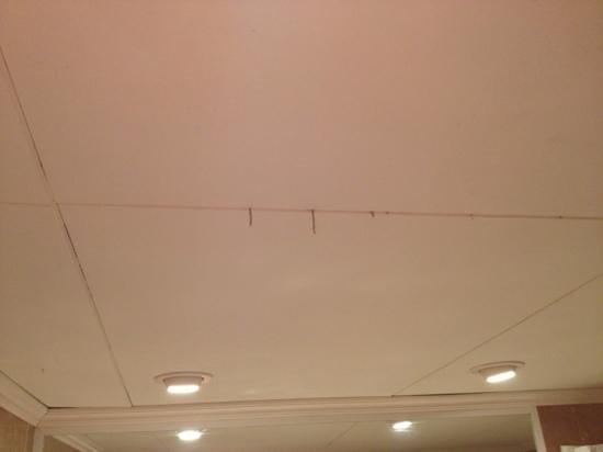 VIK Hotel San Antonio : Cobwebs hanging from bathroom ceiling
