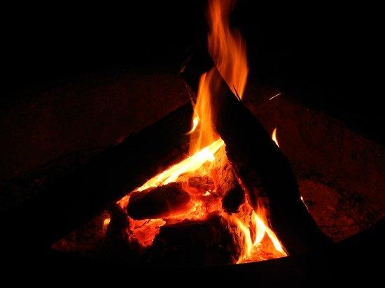 Little Talbot Island State Park : Fire