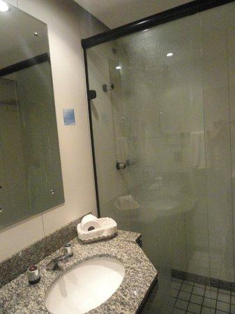 Metropolitan Flat: Not a tiny bathroom