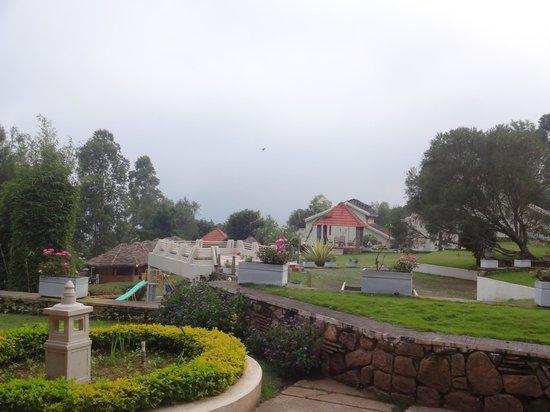 The Siena Village: Lawn