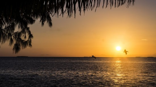 Pelican Beach - South Water Caye : the sunset