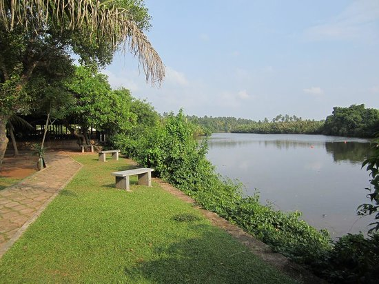 Kumudu Valley Resort: The lagoon