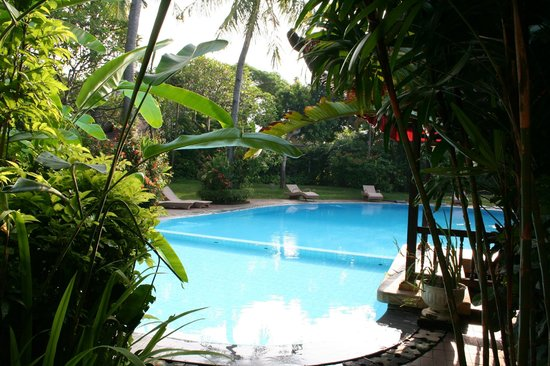 Three Brothers Bungalows: The swimming pool