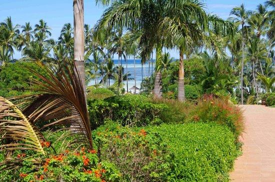 Dream of Zanzibar: Hotelgelände