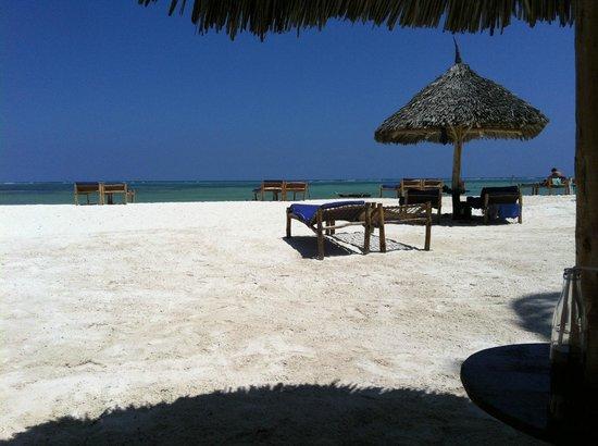 Dream of Zanzibar: Strand