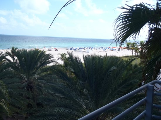 The Ritz-Carlton, South Beach: View from balcony