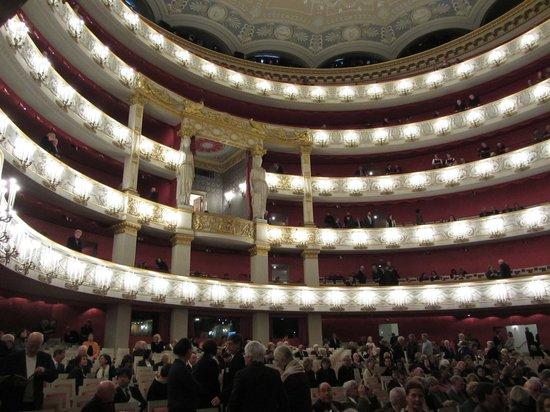 Bayerische Staatsoper : Зрительный зал перед спектаклем