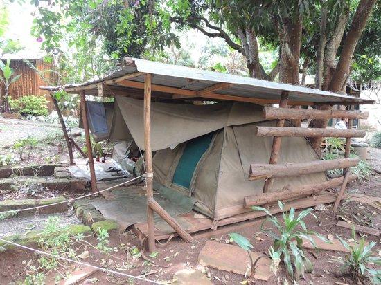Upper Hill Campsite: the camping area