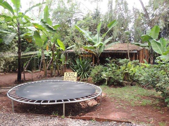 Upper Hill Campsite: trampolin!