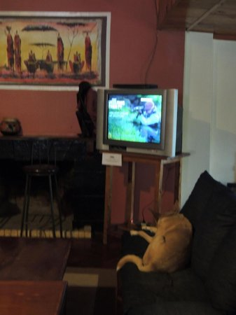 Upper Hill Campsite: dog comfy in the lounge