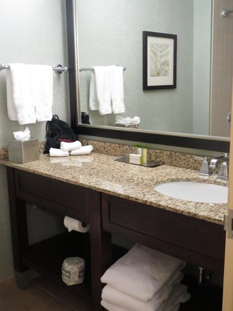 DoubleTree Suites by Hilton Hotel Raleigh-Durham : bathroom