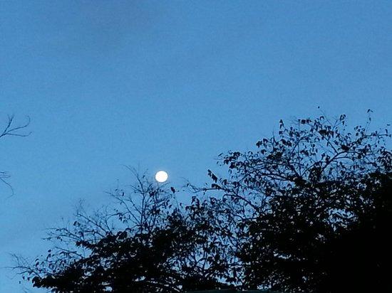 Arca de Noe Bed & Breakfast: desde temprano se asomaba la maravillosa luna
