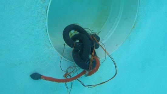 Occidental Caribe : Fils dans la piscine !!!