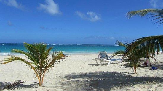 Occidental Caribe : Plage
