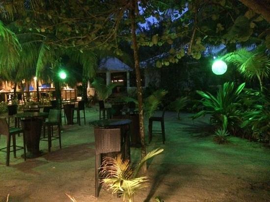 Paradise Beach Hotel : Bar area