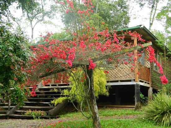 La Mision Mocona   Lodge de Selva : Paseo en carreta