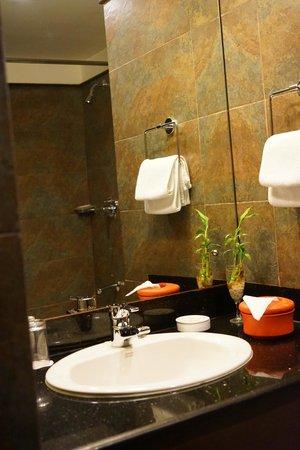 Hotel Tibet International: a clean toilet!