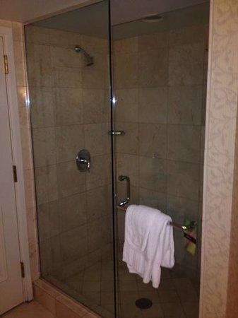 The Duke Hotel Newport Beach: shower stall (still in the bathroom)