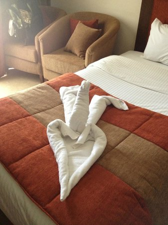 Eatabe Luxor Hotel : Swan