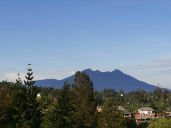 The Jayakarta Cisarua Mountain Resort: Another beautiful view from room after sunrise.