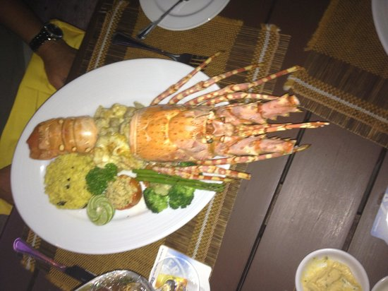 Beach Cafe Restaurant : Delicious Lobster