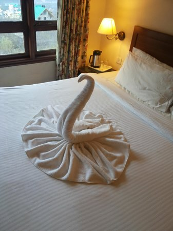 Club Mahindra Manali: towel art